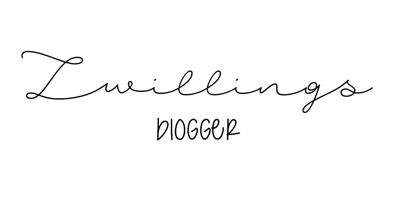 Logo der Zwillingsblogger
